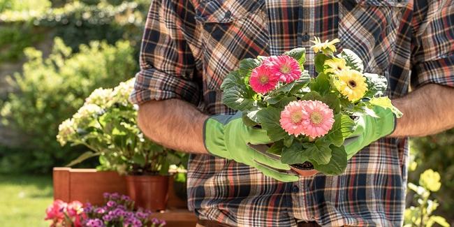 Jardinier Paysagiste : assurance multirisque professionnelle au meilleur prix