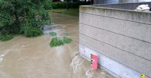 Se protéger d'un dégât des eaux : multirisque professionnelle au meilleur prix