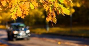 Assurance auto résiliée : comment gérer cette situation ?